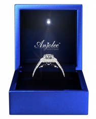 Anjolee Jewelry Box